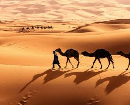 Le beau Maroc