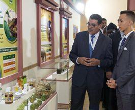 SAR le Prince Héritier Moulay El Hassan préside à Meknès l'ouverture de la 14-ème édition du Salon international de l'agriculture au Maroc
